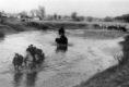 durch die Tarussa am 06. November 1941