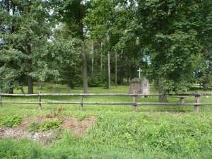 Der deutsche Friedhof in Borschimmen im Jahr 2010