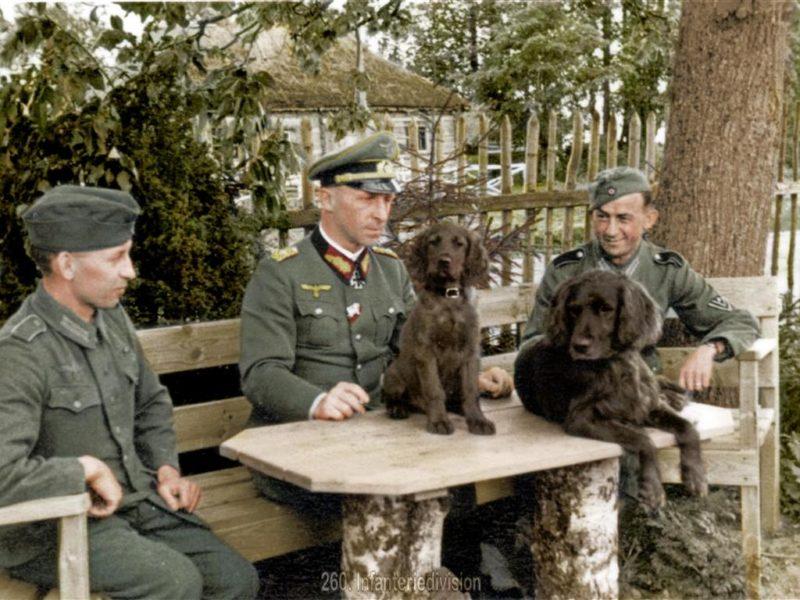 Generalleutnant Hahm im Mai 1943