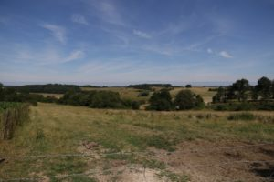 Blick auf Signy l'Abbaye