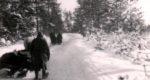 Verschneite Wälder in Russland