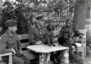 генерал-лейтенант Вальтер Хам