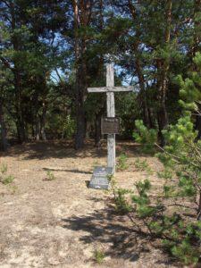 Der Friedhof in Romanischtsche im Jahr 2006