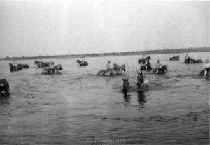 Pferde baden in der Beresina