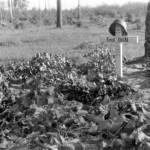 0202 Grab von Hptm Vidal gefallen am 18.8.1941