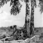 0205 Grab von Hptm Vidal gefallen am 18.8.1941