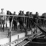 Die IV.Abteilung des Artillerieregiments 260 überquert den Dnjepr - vorne Leutnant van Helden