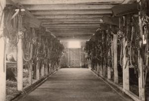 Stall in Ober-Tegernau