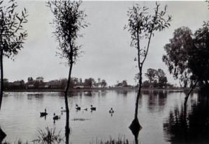 19410819 bei Tschernysch