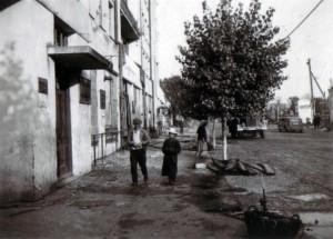 19410823 in Gomel 15