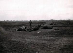 19410908 Dessnaebene bei Beresanka 02