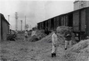 Arbeitsdienst in Frankreich - Werde diese Tage nie vergessen, Strohausladen am 27. April 1941