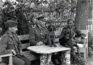 Hahm, Generalleutnant im Mai 1943