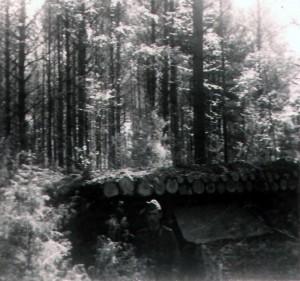 Bunkerbau am Oberrhein 1939