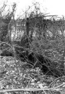 Graben im Abschnitt Rheinweiler - Klein - Rems