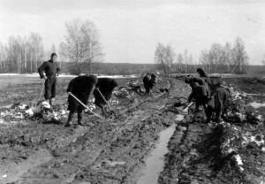 0072 Russen beim Wegebau_1