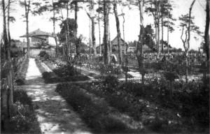 0142 Lazarettfriedhof Roslawl_1