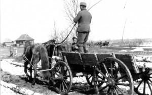 0256 Die Gefreiten Brinkmann und Papst vom AR 260 transportieren Birkenholz_1