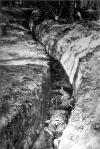 0263 SStosstrupp der 11. GR 480 unter Olt Raff am 11.05.1943 hat nördlich Kirow 900 Meter feindlichen Graben aufgerollt_1